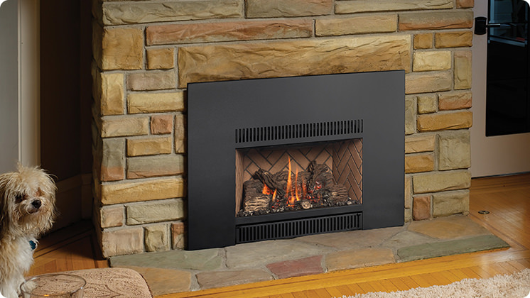 FireplaceX 31 DVI Mid-sized - Universal face