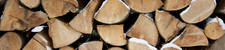 The Importance of Burning Seasoned Wood